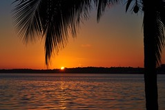 um  toque seu... me FAZ feliz!!!!!!! Volto Segunda. (Ruby Ferreira ) Tags: sunset coconut lagoon prdosol lagoa notreatment araruamarj brasilemimagens galhosbranches vacation2012