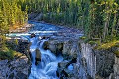 Sunwapta Falls (Philip Kuntz) Tags: autumn canada waterfalls alberta assiniboine jaspernationalpark icefieldsparkway athabascaglacier sunwaptafalls sunwaptariver turbulentwaters