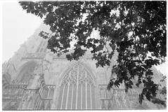 up (jj birder) Tags: york blackandwhite bw film fog 35mm yorkshire contax minster aria