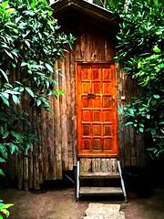 Tree house (seydayldrm) Tags: olimpos antalya tree house turkey trkiye