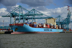Maersk Lima DST_4147 (larry_antwerp) Tags: maersklima maersk 9526875 psaterminal container noordzeeterminal antwerp antwerpen       port        belgium belgi          schip ship vessel        schelde