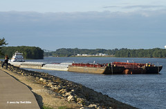 Barge Clinton IA 8-8-2012 (Frater Operator) Tags: mississippiriver samuelbrichmond barge river clinton iowa tugboat