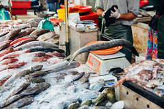 Man weighs fish on the scales (Evgeny Ermakov) Tags: asia asian georgetown malaysia penang southeast southeastasia culture fish fresh freshness hand ice local man market marketstall marketplace raw sale salesman scales seafood sell seller selling stall street streetmarket traditional typical vendor weigh weighing wetmarket