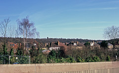 Eltham Park Gardens (Matthew Huntbach) Tags: elthamparkgardens se9 eltham fujivelvia100 bluesky