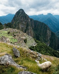 Day 514. Been trying to upload the 360 video I have of Machu Picchu but the file is so massive I haven't found any internet up to the task yet. Hopefully I can share it with you guys by the weekend. #theworldwalk #travel #peru