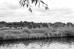 Bridgewater Canal (MCorrigan1983) Tags: jch400 streetpan 2016 bw dunhammassey jchstreepan400 nikkor50mmf14ais nikonfe2