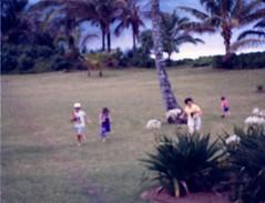 All the kids running in the Coconut Races - c1983 (kimstrezz) Tags: 1983 familytriptohawaiic1983 hanaleibay kauai kim bert mandy michael