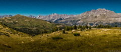 Las ovejas del valle de Tena (juan luis olaeta) Tags: photoshop lightroom photomerge paisages landscape panoramicas natura nature valledetena ovejas aragon canon pirineos