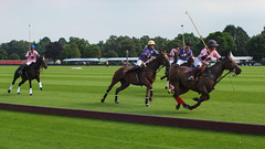 Guards Polo Club Aug 2016 14 (Timelapsed) Tags: sport ourdoors horseback hourse windsor windsorgreatpark
