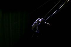 MX TV VOLVER DE CIRCO DEMENTE (Fotogaleria oficial) Tags: demente cirko volver acrobacias trapecio
