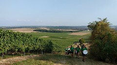 Kurzer Aufstieg von der Treckerstation zur Weinprobe