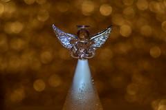 DSC_5210 (Milena Z) Tags:          442      angelo angel colore color luce giocodiluci ombra bokeh helios helios442 manuallens senzafiltri vladikavkaz
