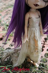 blythe ooak dress (Dusk~) Tags: blythe ooak custom doll vampire purple eye lids chips dress bear box outside piparrot reroot adoption