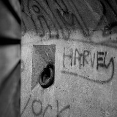 Naughty (Andrew Malbon) Tags: sigma sigmadp3 dp3 dp3m merrill foveon japanese 50mmf28 50mm reflections urbex urban graffiti concrete harvey naughty rosegarden strongisland