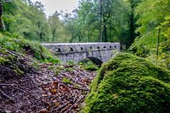 Schwammhhe (Smi_Madani) Tags: glarus schweiz schwammhhe motorrad motorcycle switzerland netstal bridge herbstwald wald fuji xt1 1855