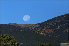 Moonset Over Rocky Mountain Nation Park in Colorado (Tom Wildoner) Tags: tomwildoner leisurelyscientistcom leisurelyscientist colorado rmnp rocky mountain national park rockymountainnationalpark trees fall autumn moon moonset mountains outdoors canon canon6d nature environment hiking backpacking space solarsystem