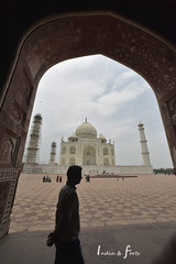 _NKN5845 (j1020) Tags: india delhi arga tajmahal redfort argafort