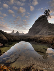 Twilight Reflections at Shi Shi (Andrew E. Larsen) Tags: reflection papalars andrewlarsenphotography