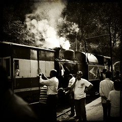 Old english train to Ooty (marsoyann) Tags: bw india sepia train square nb ooty inde southindia carre