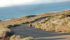(Gabriel.S.) Tags: california skate morrobay centralcoast gravityskateboards