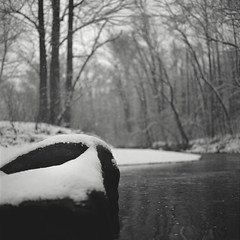 snow on darby creek III (Owen Luther) Tags: trees winter blackandwhite white snow black cold 6x6 film analog creek mediumformat square fuji pennsylvania monochromatic hasselblad pa darby springfield flakes acros100 hasselblad500cm