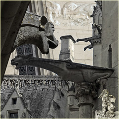 Grotesques and gargoyles (Tedje51 - mostly off (very busy)) Tags: bw france castle collage carving medieval gargoyle souvenir creature challenge gargouille grotesque waterspuwer pierrefonds architecturalsculpture animalshapedwaterspout