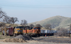 UP & BNSF at Bealville (0464) (DB's travels) Tags: california railroad up unionpacific bnsf tehachapiloop kerncounty tempcrr