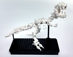 Dinosaur Skeleton (Dave Shaddix) Tags: skeleton lego dinosaur minifigscale