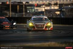 APR-Motorsport-Rolex-24-2013-068