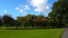 The Meadows Edinburgh
