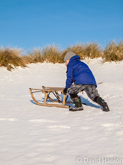 Small boy pushing sledge (dave hanlon) Tags: family winter boy snow playing cold fun vakantie kid child play snowy lol dunes dune sneeuw familie joy kinderen kind push lachen moeder duinen pleasure awd lach sneeuwpret sledge sledging slee muts pushing kou pret koud gezin duin spelen samen plezier relaxen uitrusten vakantiegevoel gelukkig laarzen geluk handschoen vreugde duingebied ontspanning recreatie amsterdamsewaterleidingduinen dezilk ontspannen sleeen sleetje blijheid samenspelen samenzijn jongegezin