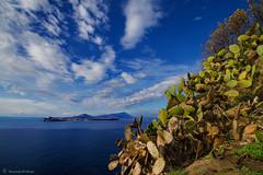 Islands (Vincenzo DI Nuzzo) Tags: blue sea mediterranean ficodindia campania napoli naples ischia bacoli procida baia golfodinapoli campiflegrei montediprocida