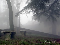 Santa Vittoria (Vitafabrizio64) Tags: nikon nebbia inverno marche giardino paese nikond5000