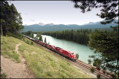 Westbound follows the Bow River (greenthumb_38) Tags: railroad canada reunion train rockies canadian alberta locomotive canadianpacific cp bowriver 2012 canadianrockies jeffreybass august2012 moseankoreunion