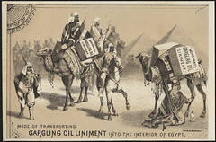 Mode of transporting Gargling Oil Liniment into the interior of Egypt. (front) (Boston Public Library) Tags: men camels patentmedicines advertisingcards oilsfats