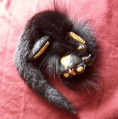 Egyptian/Chinese Dragon (Blackiceheart) Tags: sculpture black art ball fur gold doll soft dragon handmade ooak tail small chinese horns plush fantasy scales fox mink egyptian cuddly playful rolling mane anubis mythical
