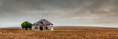 The Stand (Craig Holloway) Tags: panorama house mist fog zeiss sunrise landscape nikon farm pano australia panoramic nsw decrepit d800 zeiss50mm nikond800 makroplanar502zf makroplanart250