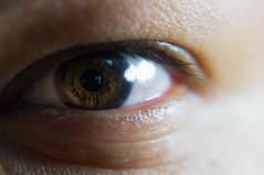 Iris (mac_prv) Tags: iris woman brown macro eye closeup lady ojo cool eyelashes random