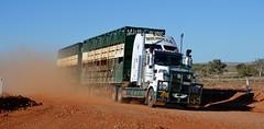 Nicholls (quarterdeck888) Tags: flickr frosty lorry trucks livestock bushbash roadtrain kenworth tractortrailer quarterdeck nicholls outbackaustralia roadtransport stockcrate jerilderietruckphotos jerilderietrucks
