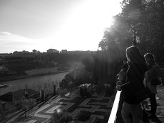 Panorama (Van der Dal) Tags: park sunset panorama woman sun tree girl look river garden landscape view balcony stroll labyrinth counterlight