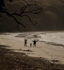 Who we are for our children...trees of life (Deborah Kelland) Tags: children parents grandparents oneroa waiheke silhouette baby beach sea seaside monochrome mother grandmother