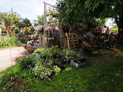 P6080772 (photos-by-sherm) Tags: good quilts retail garden flowers sculpture yard accessories amana iowa summer decorations metal