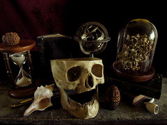 Vanitas II (Gabriel J. Bell) Tags: vanitas stilllife naturemorte bodegn calavera skull relojdearena sandclock tabla
