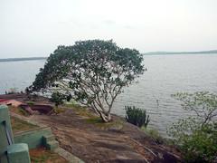 Holiday Bungalow, Padaviya Wewa (Malka001) Tags: holiday bungalow padaviya wewa water tree irrigation rock sky araliya flower pond