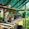 Greenhouse (sclarke_pix) Tags: pottingshed potting greenhouse gardening