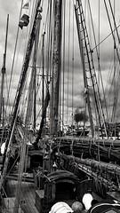 Hanse Sail Rostock (pentaxfinger) Tags: pentaxfinger rostock bwswblackwhiteschwarzweis hansesail segelboot schoner traditionssegler segler stadt stadthafen mvp mecklenburg vorpommern kste coast dampf dampfschiff hintergrund