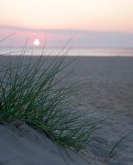 anothersunrise (EWisePhoto) Tags: virginabeach virginia sunrise beachsunrise