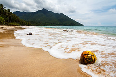 Palawan (JOLIVETV) Tags: coconuts palawan philippines 2016 june canon60d tokina wideangle island sea beach paradisiac white sand mountain asia green padang underground river