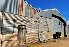 tin shed walls (holly hop) Tags: starnaud shed walls wallwenesday corrugatediron tin tinshed rust rustyandcrusty rusty hww inexplore explored