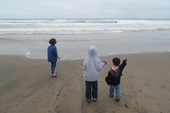 DSC_0303 (rlnv) Tags: california bayarea sanfrancisco nikond3300 1855mmf3556gvrii oceanbeach beach walter caitlin toms